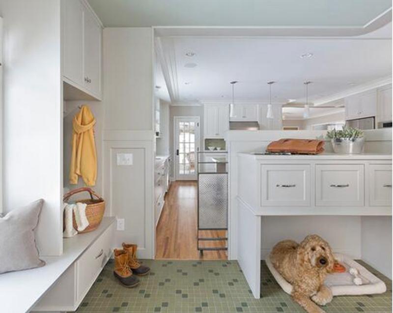 家中寵物空間如何設計?
