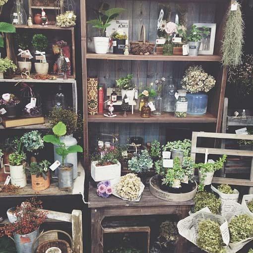 花店里的秘密花园 来看看它的装修设计布局